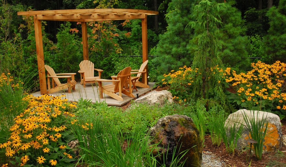 New American garden style with blackened Susan mass planting & custom cedar pergola